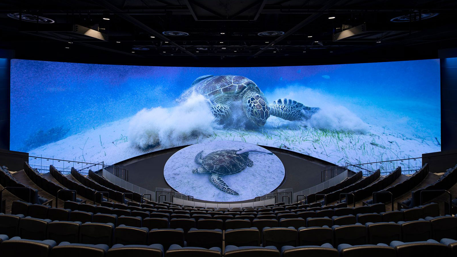 Honda Pacific Visions 4D theater at Aquarium of the Pacific with Ultraleap haptic technology