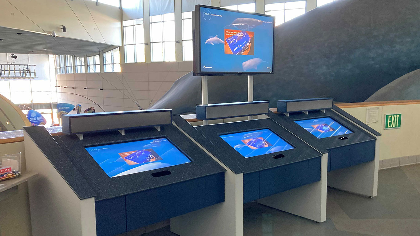 Touchless interactive exhibit at the Aquarium of the Pacific